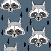 Rnew_raccoon_face_pg_shop_thumb