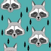 Rnew_raccoon_face_shop_thumb