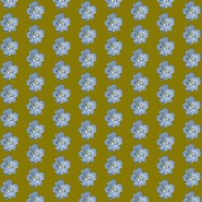 Single larkspur flower - dark green