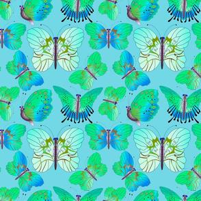 Shimmering Butterflies