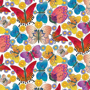 Large Multicolored Butterflies