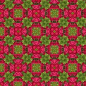 Leaves_508X508