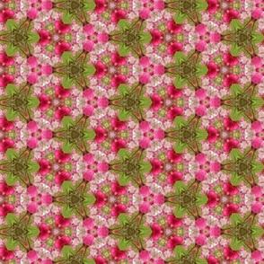 Blossoms_510_X_294