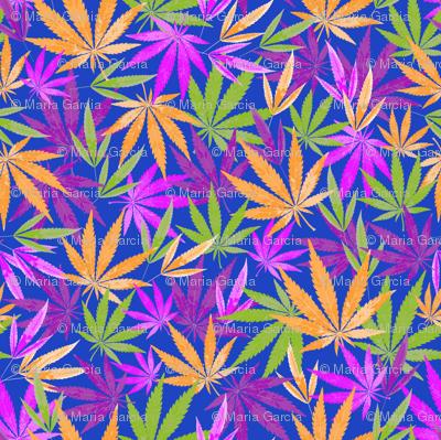 Colorful Marijuana Leaves