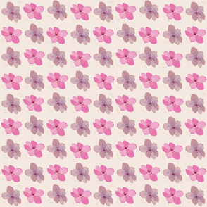 Peach blossoms on a grid