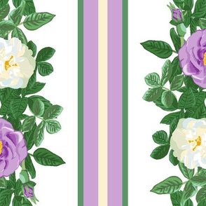 Purple_and_White_Rose_Stripe_MFD
