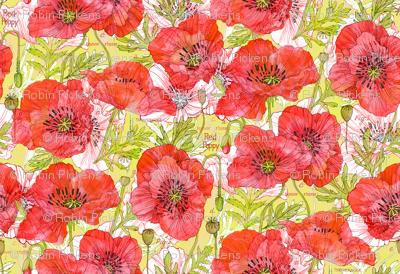 California Poppies Botanical Sketchbook Sm10in