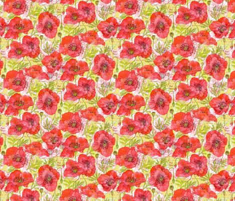 California Poppies Botanical Sketchbook Sm10in fabric by robinpickens on Spoonflower - custom fabric