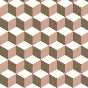 cubo_Vison_blcrudo
