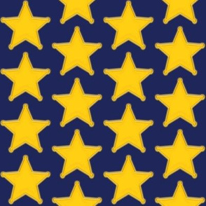 Blue Police Badge Star