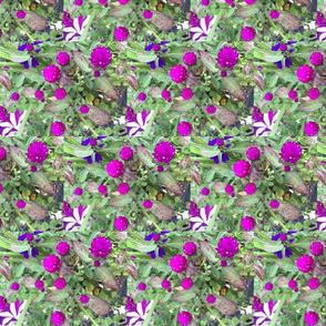 Blooms in a field 2