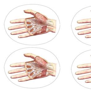 Anatomical Hand Potholder Inside
