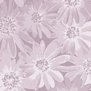 lilac-mauve anenomes