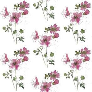 2nd pink flower
