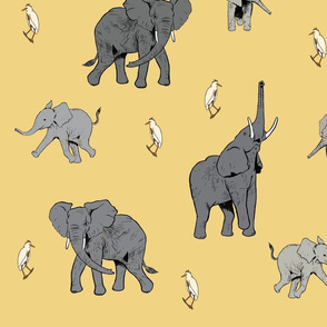 ElephantsGray