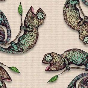 Color Chameleons
