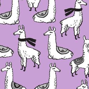 Llama - Wisteria by Andrea Lauren