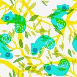 summer chameleons