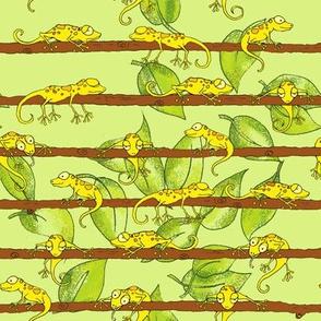 Yellow Lizards
