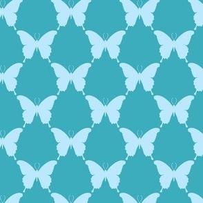 butterfly_geo_bella_2_A