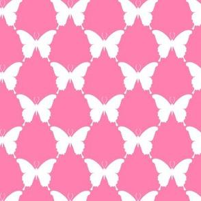 butterfly_geo_bella_2_B