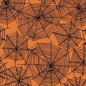 spider web  // webs spiders cute scary orange and black halloween