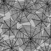 Rspider_web_slate_grey_shop_thumb