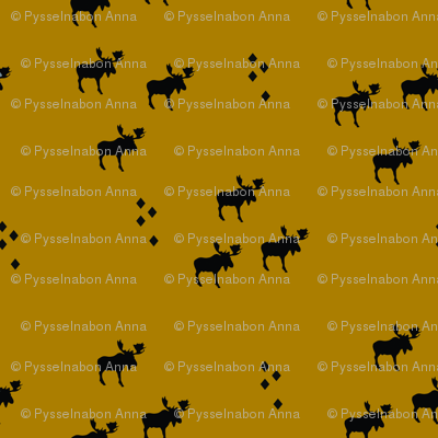 moose mustard