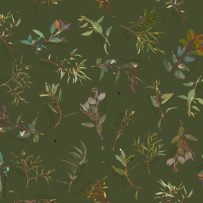 Eucalyptus foliage collection on Green 464c2e