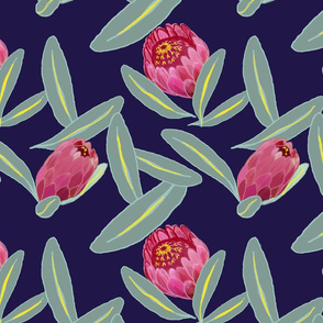 Proteas on navy by Katrina Ward
