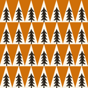 trees // orange brown neutral boys tree forest woodland