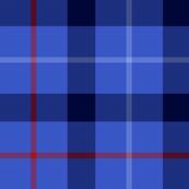 Davidson of Tulloch tartan, blue