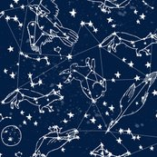 Rconstellations_fabric_navy_blue_shop_thumb