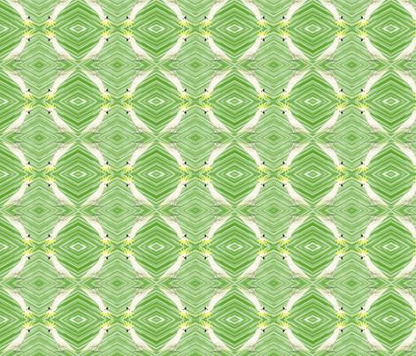 Cockatooed fabric by brave_fabrics on Spoonflower - custom fabric