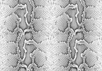 Python / Bold