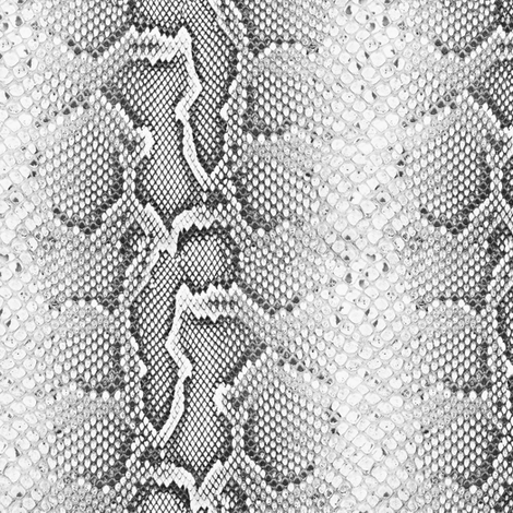 Python / Bold fabric by willowlanetextiles on Spoonflower - custom fabric
