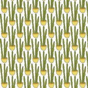 Hand-drawn Cactus