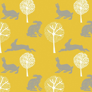 Forest Hare 2