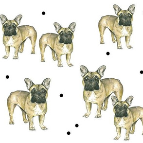 French Bulldogs and Dots