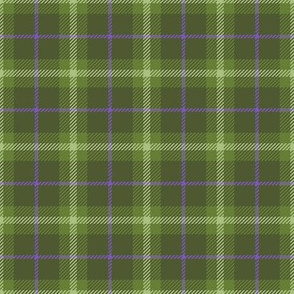 Little Girlie Plaid 144 Olive Purple
