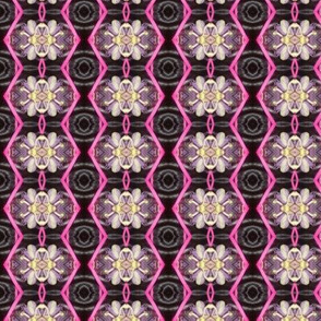 Passion flower pink and black