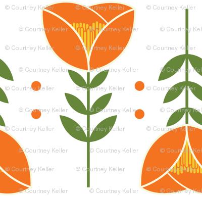Lovely Orange Tulips