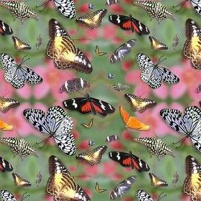 butterflies ditsy
