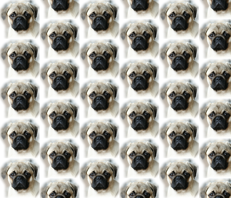 Pug dog fabric by irenedesign on Spoonflower - custom fabric