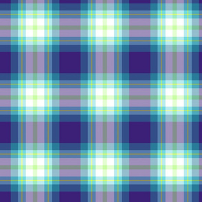 BluePlaidGreenCross