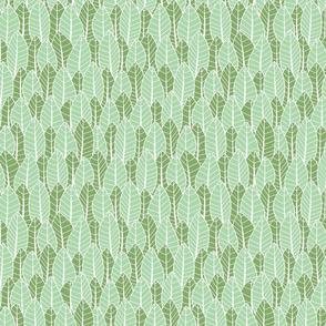Protea Leaf Spring