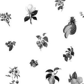 Fruit n Floral BW