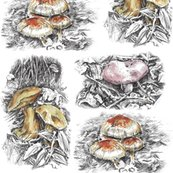Rmushrooms_pen_and_ink_rev3_shop_thumb