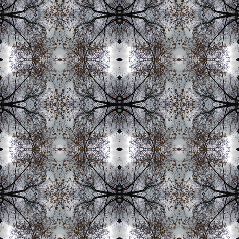 Spooky Spidery Trees in the Wintry Wood (Ref 0758b) fabric by rhondadesigns on Spoonflower - custom fabric