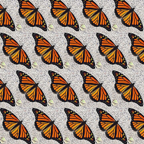 Monarchs at rest